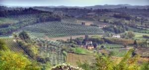 San Miniato, Toskana: Hier in der Nähe von Pisa gibt es feinste Weisse Trüffel.
