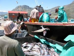 Ueberfischung