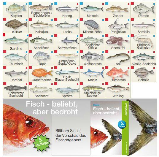 Greenpeace Fischratgeber.